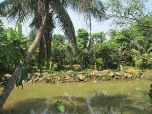 đất vườn ngoại ô sài gòn, quy hoạch sử dụng đất vườn