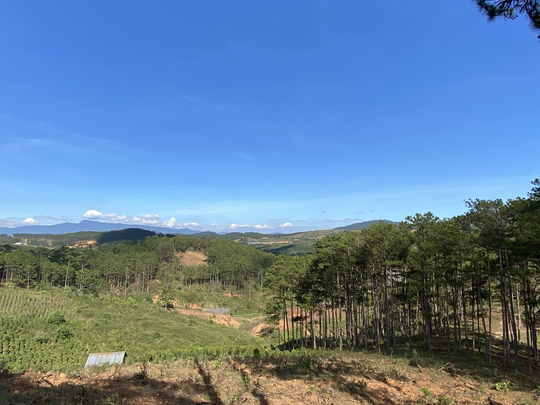 Bán 11.420m đất xã Đạ Sar, Huyện Lạc DƯơng, Tỉnh Lâm Đồng